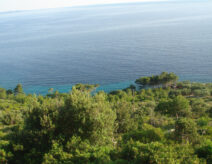 Tourism zone Jagodna - projects and real estate in Hvar