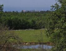 Stancija Špin - projekti i nekretnine Istra